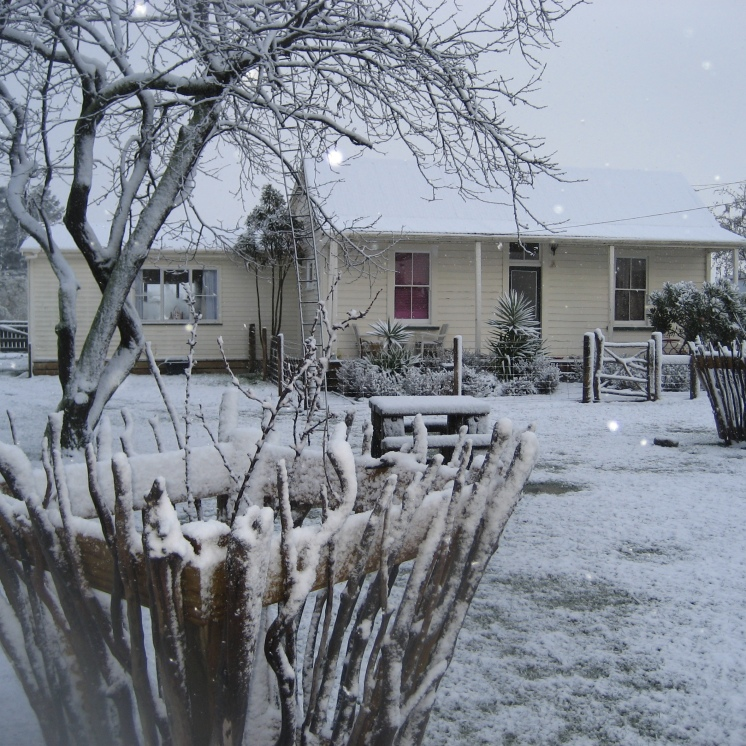 Winter wonderland at the MAD house