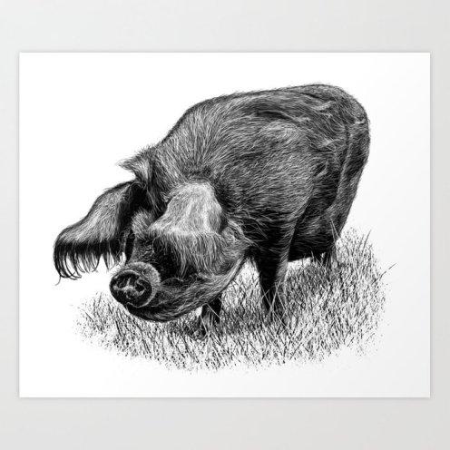 piggy1369532-prints